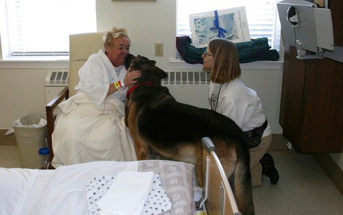 animal-therapy-patient-kiss